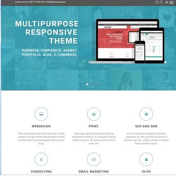 Web Design und Hosting